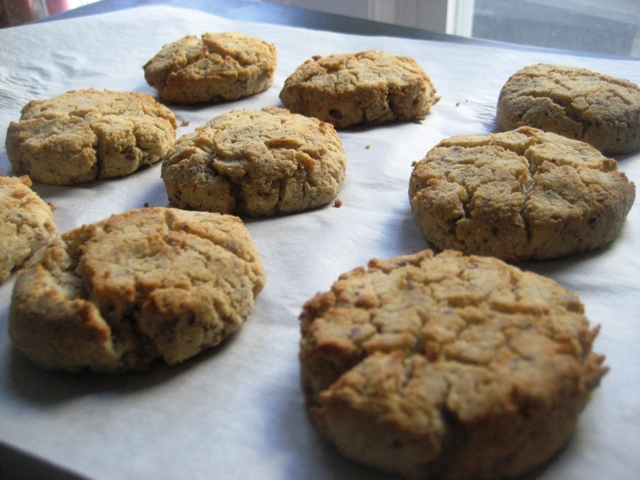 Biscuits!   The Candida Diaries