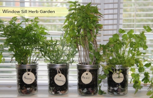 herb-garden-window
